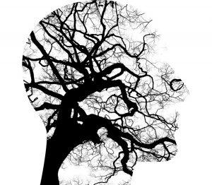 Verschil psycholoog en psychiater - beiden beschikbaar in ons team voor online therapie
